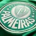Henrique_Palmeiras