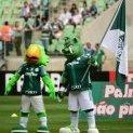 super_verde
